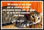 FAMILIARES  2012 MASCOTAS (5) - copia