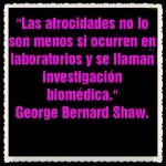 George Bernard Shaw (2)