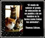 Thomas Edisoni -AN GAN EL GUARDIÁN DEL TEMPLO -JEM WONG (49)