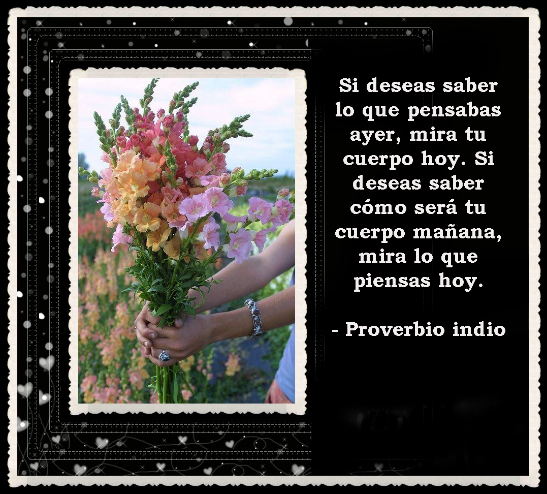 FRASES BONITAS -FACE-0- (151)