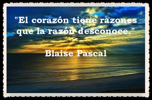 FRASES BONITAS -FACE (655555)