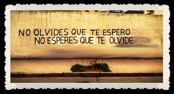 FRASES  BONITAS Y CITAS ILUSTRADAS (12)