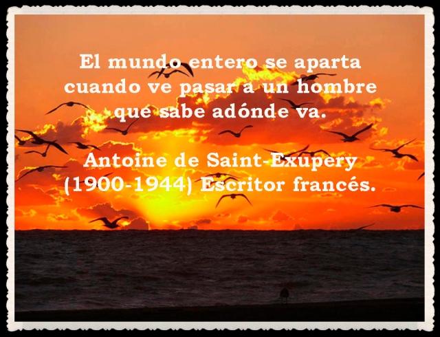 FRASES  BONITAS Y CITAS ILUSTRADAS (15)