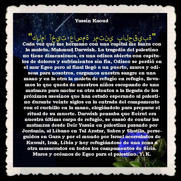 FRASES  BONITAS Y CITAS ILUSTRADAS (3)