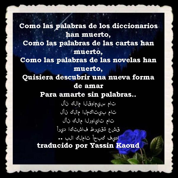 FRASES  BONITAS Y CITAS ILUSTRADAS (52)