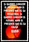 FRASES BONITAS (39)