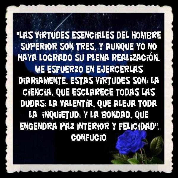 FRASES  BONITAS PENSAMIENTOS    (8)