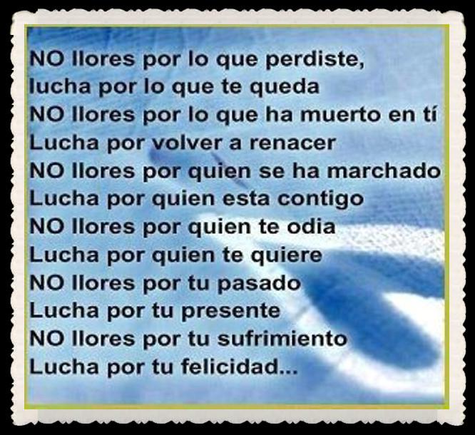 FRASES  BONITAS PENSAMIENTOS    (83)