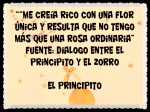 EL PRINCIPITO - Le Petit Prince (13)