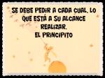 EL PRINCIPITO - Le Petit Prince (19)