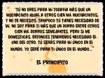 EL PRINCIPITO - Le Petit Prince (2)