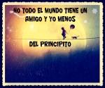 EL PRINCIPITO - Le Petit Prince (20)