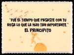 EL PRINCIPITO - Le Petit Prince (21)