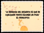 EL PRINCIPITO - Le Petit Prince (22)
