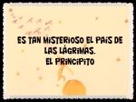 EL PRINCIPITO - Le Petit Prince (23)