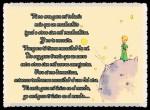 EL PRINCIPITO - Le Petit Prince (25)