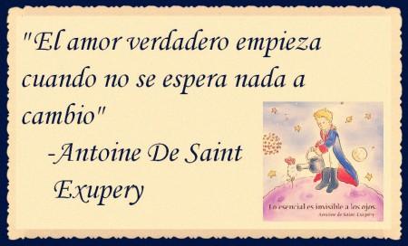 EL PRINCIPITO - Le Petit Prince (26)