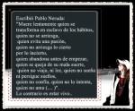 EL PRINCIPITO - Le Petit Prince (27)