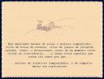 EL PRINCIPITO - Le Petit Prince (28)