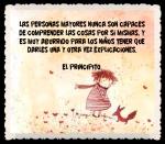 EL PRINCIPITO - Le Petit Prince (32)