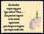 EL PRINCIPITO - Le Petit Prince (34)