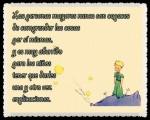 EL PRINCIPITO - Le Petit Prince (35)