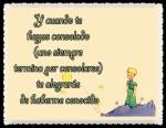 EL PRINCIPITO - Le Petit Prince (39)