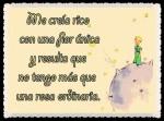 EL PRINCIPITO - Le Petit Prince (41)
