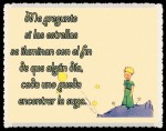 EL PRINCIPITO - Le Petit Prince (43)