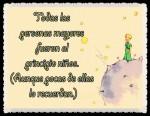 EL PRINCIPITO - Le Petit Prince (47)