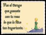 EL PRINCIPITO - Le Petit Prince (49)