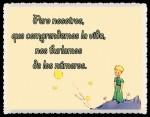 EL PRINCIPITO - Le Petit Prince (50)
