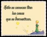 EL PRINCIPITO - Le Petit Prince (53)