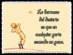 EL PRINCIPITO - Le Petit Prince (56)