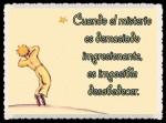 EL PRINCIPITO - Le Petit Prince (57)