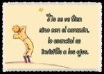 EL PRINCIPITO - Le Petit Prince (59)