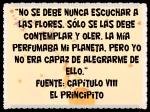EL PRINCIPITO - Le Petit Prince (8)