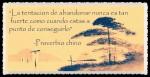 FRASES BONITAS CITAS Y PENSAMIENTOS      (13)