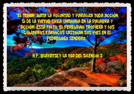 FRASES BONITAS CITAS Y PENSAMIENTOS      (6)
