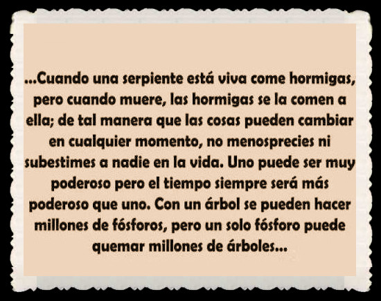 FRASES BONITAS CITAS Y PENSAMIENTOS      (79)