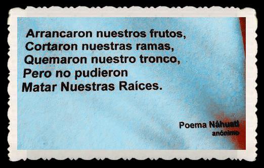 FRASES BONITAS CITAS Y PENSAMIENTOS      (85)