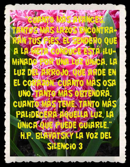 FRASES BONITAS CITAS Y PENSAMIENTOS      (9)