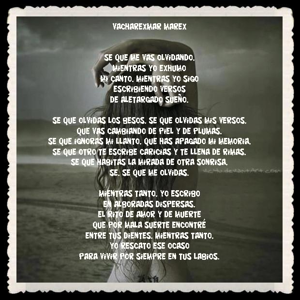 FANNY JEM WONG FRASES BONITAS CITAS Y PENSAMIENTOS      (19)