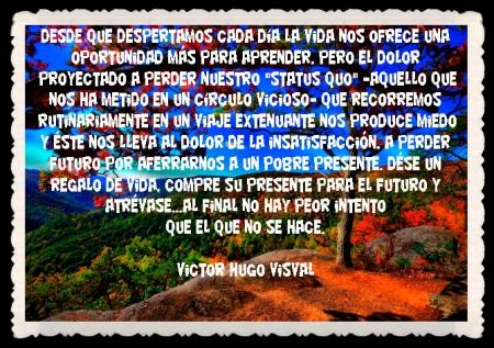 VICTOR HUGO VISVAL FRASES BONITAS CITAS Y PENSAMIENTOS      (42)