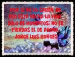 FANNY JEM WONG FRASES BONITAS CITAS Y PENSAMIENTOS      (163)