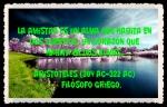 FANNY JEM WONG FRASES BONITAS CITAS Y PENSAMIENTOS      (3)