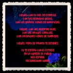 FANNY JEM WONG FRASES BONITAS CITAS Y PENSAMIENTOS     -- (8)