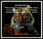 FANNY JEM WONG -FRASES  BONITAS PENSAMIENTOS   (38)
