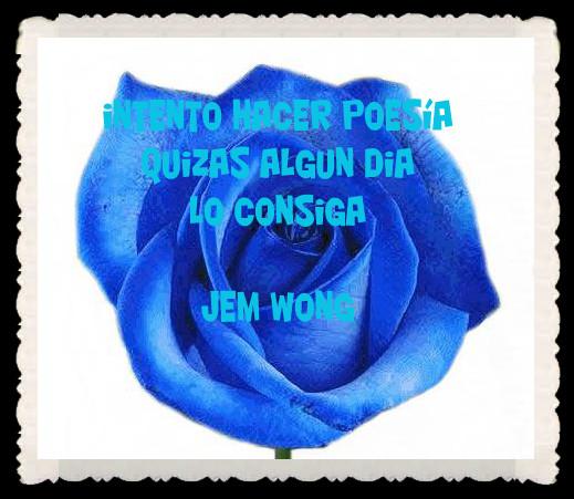 FANNY JEM WONG FRASES BONITAS CITAS Y PENSAMIENTOS      (14)