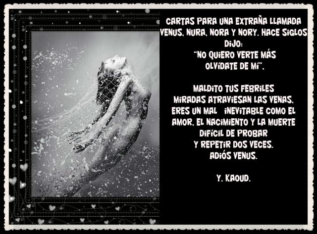 POEMAS ARABES TRADUCCIÉS DE Yassin Kaoud  (19)